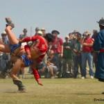 Competición de lucha