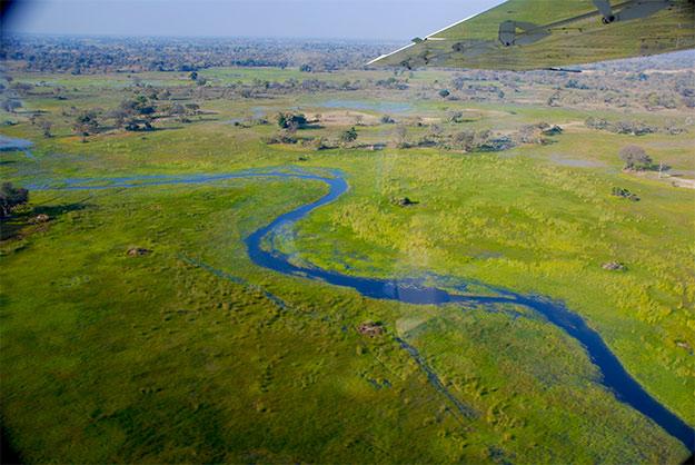 Los canales del delta