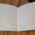 Mi diario del 12 de noviembre del 2013