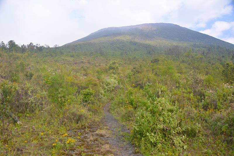 La ascensión desde que sales del bosque y arriba, la cima del volcán