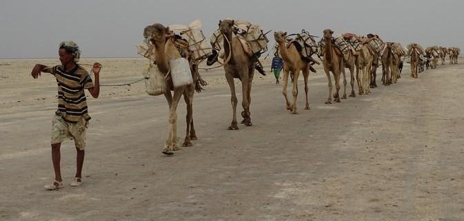 Caravana de Sal