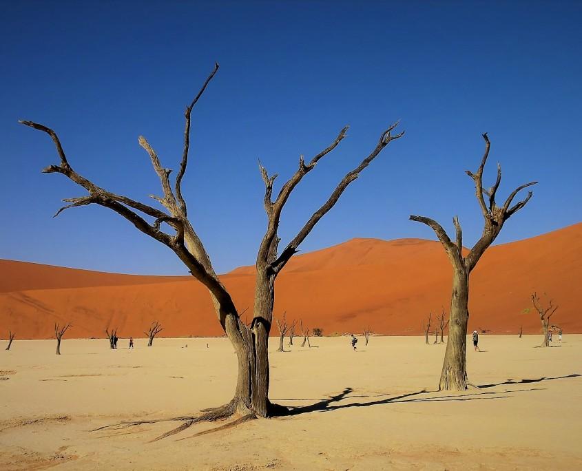 El rojo de las dunas y el azul del cielo forman una estampa única