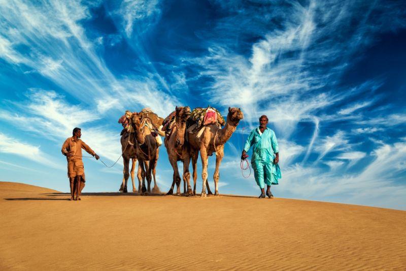 Foto de Ruta por Del Rajastán hasta Varanasi 6