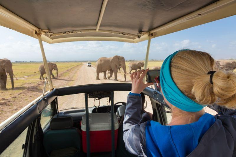 Foto de Ruta por El lado salvaje de África disfrutando de los parques
