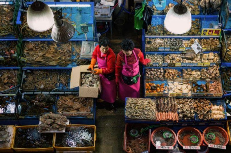 Foto de Ruta por El rincón desconocido de Asia Vendedoras de pescado