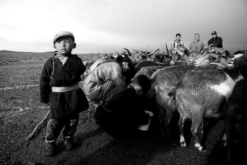 Foto de Ruta por El Transiberiano, desde San Petersburgo hasta Pekín niño