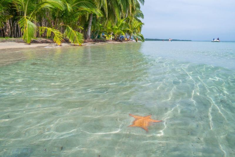 Foto de Ruta por Estallido Natural Playa de estrellas de mar de Bocas de Toro