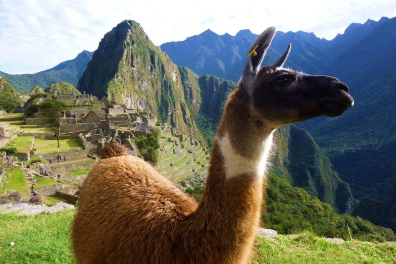 Foto de Ruta por Exaltación Andina 7