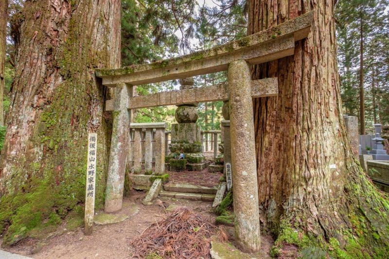 Foto de Ruta por Japón a tus pies Mount Koya