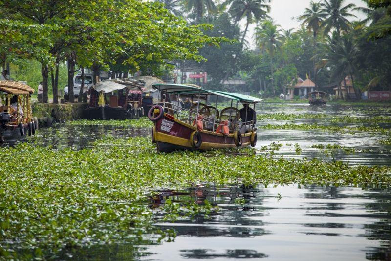 Foto de Ruta por La India menos conocida Backwaters