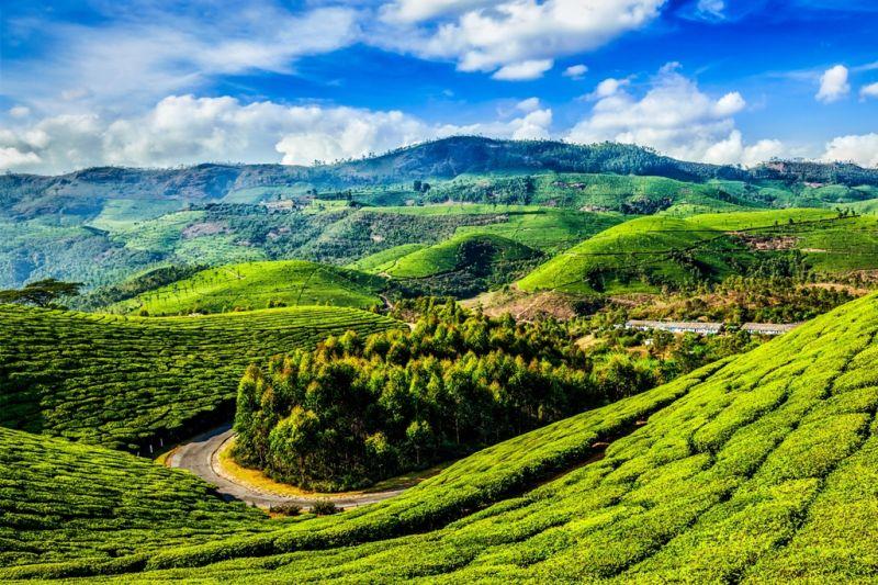 Foto de Ruta por La India menos conocida Kerala y sus paisajes