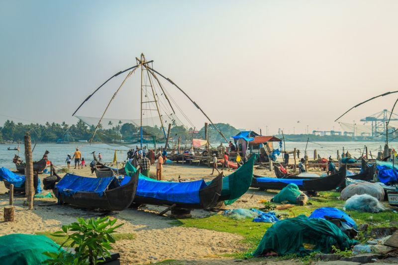 Foto de Ruta por La India menos conocida Mercado de pescado