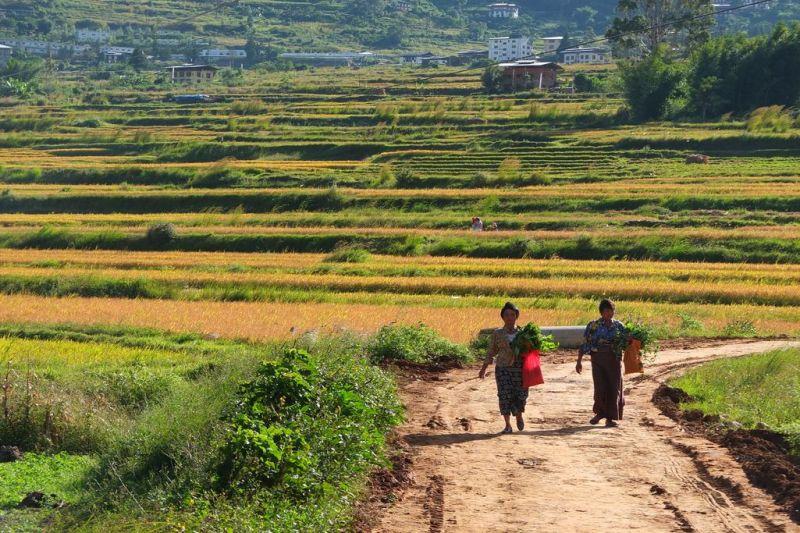 Foto de Ruta por La reserva espiritual de los Himalayas 4