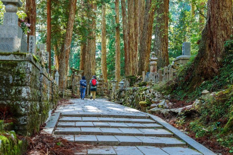 Foto de Ruta por Los colores de Japón