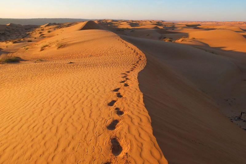 Foto de Ruta por Los tesoros del desierto