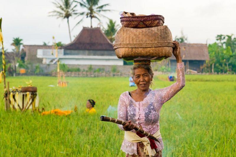 Foto de Ruta por Postales de Indonesia