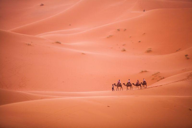 Foto de Ruta por Rumbo al desierto sahara