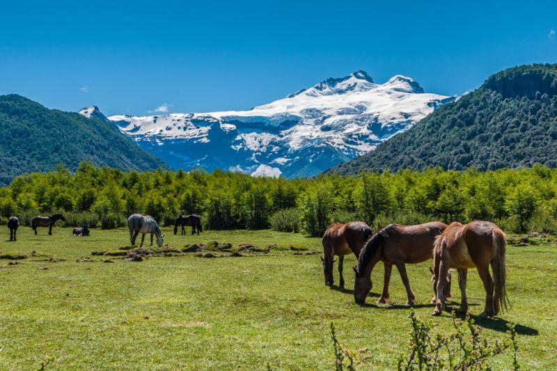 Foto de Ruta por Ruta Patagónica Vistas del Cerro Tronador en Bariloche