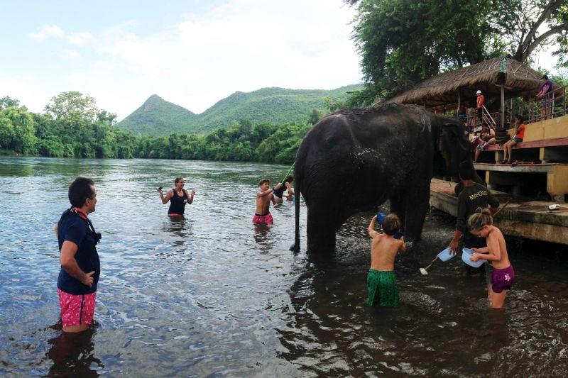 Foto de Ruta por Tailandia en Familia Bbaño elefante