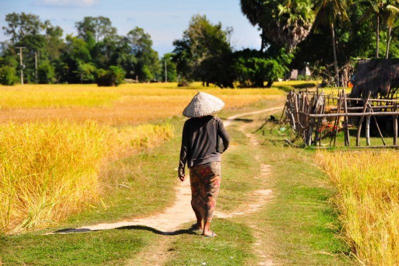 Foto de Ruta por Yoga y Aventura en Camboya Campesino