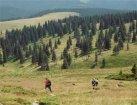 Viaje a Rumania - Excursión por las montañas Cindrel