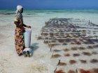 Viaje a Tanzania - Playas de Zanzibar