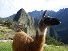 Viaje a Peru