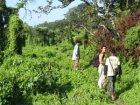 Viaje a Nepal - Excursión por la jungla de Chitwan