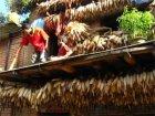 Viaje a Nepal - Secando el maíz en Changu Narayan