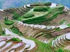 Viaje a China - Terrazas de Arroz de Guilin