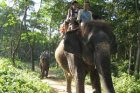 Viaje a Nepal - Paseo en elefante en el P.N. Chitwan