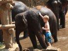 Viaje a Tailandia - Bañando a un elefante