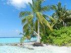 Viaje a Sri Lanka Y Maldivas