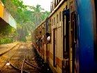 Viaje a Sri Lanka