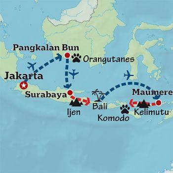 Mapa de Indonesia salvaje